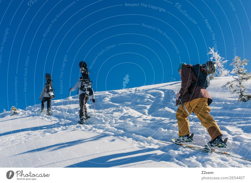 Tourers. Freeriders. Leisure and hobbies Trip Adventure Winter Mountain Hiking Winter sports Skiing Snowboard Masculine 3 Human being Nature Landscape