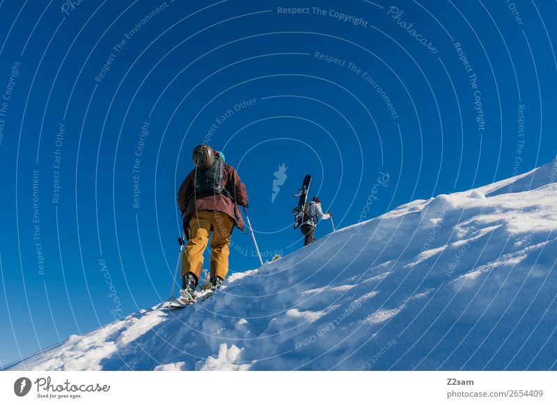 Tourers. Freeriders. Winter sports Skiing Snowboard Nature Landscape Cloudless sky Beautiful weather Ice Frost Alps Mountain Relaxation Going Sports