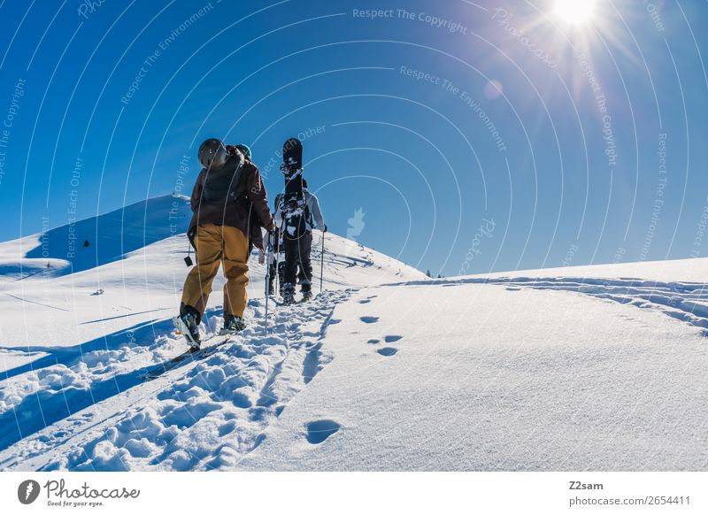 Tour hikers. Ascent. Style Vacation & Travel Freedom Winter Snow Mountain Winter sports Skiing Snowboard Masculine 2 Human being Nature Landscape Sun Summer