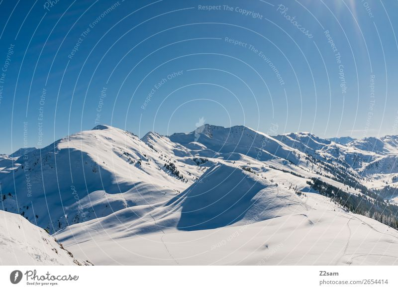 Winter panorama   Tyrol Nature Landscape Sky Beautiful weather Snow Alps Mountain Esthetic Gigantic Tall Cold Sustainability Natural Blue Idyll Climate Calm
