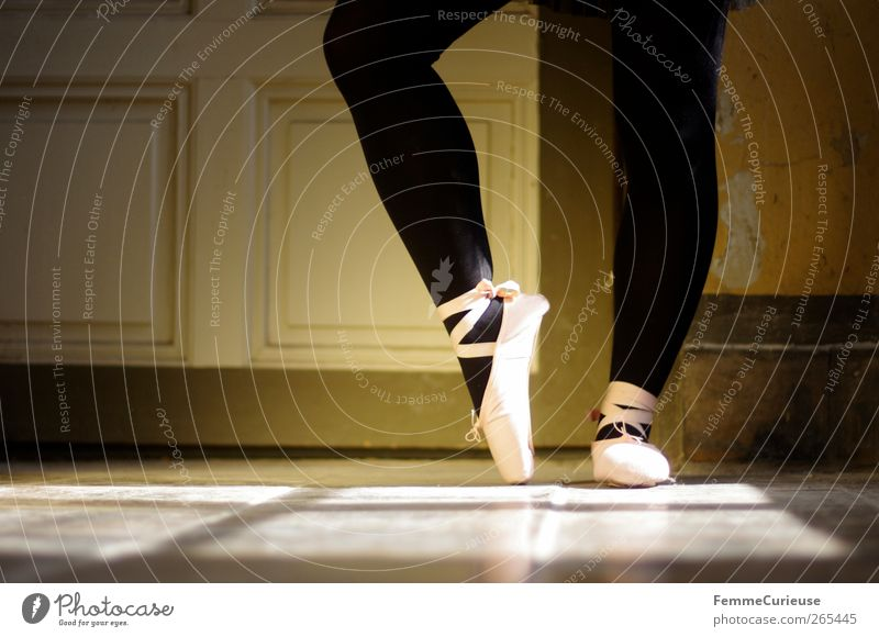 Ballet VII. Artist Dance Dancer Esthetic Movement Concentrate Precision Sports Training Posture Ballet shoe Tights Black Pink Interior shot Copy Space left