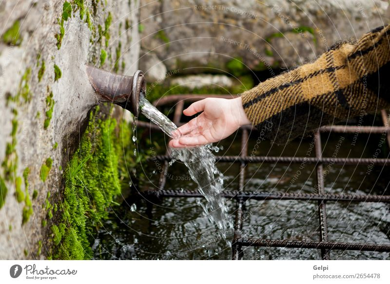 Hand touching water from a natural fountain Winter Snow Mountain Child Human being Woman Adults Fingers Nature Moss Brook Coat Stone Drop Fresh Natural Clean