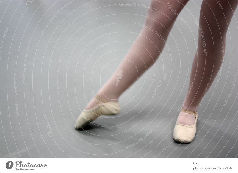 Youth (Young adults) Feminine Legs Feet Power Dance Elegant Esthetic Stand Young woman Point Thin Athletic Tights Ballet Dancer
