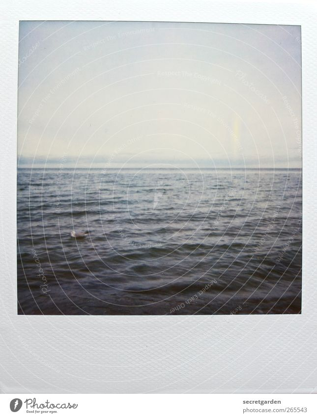 Blue Water White Ocean Winter Calm Relaxation Gray Horizon Waves Middle Peace North Sea Baltic Sea Cloudless sky Horizontal