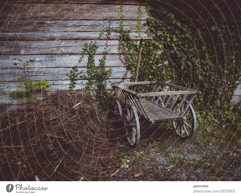 Yesterday's mobility Building Wall (barrier) Wall (building) Trolley Old Historic Wood Wooden wall Ivy Cart Agriculture Farm Transportation vehicle Museum