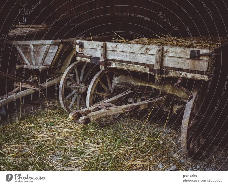 agrar oldtimer Nature Hut Trolley Trailer Old Historic Farm Open-air museum Cart Straw Wood Agriculture Transportation vehicle Colour photo Subdued colour