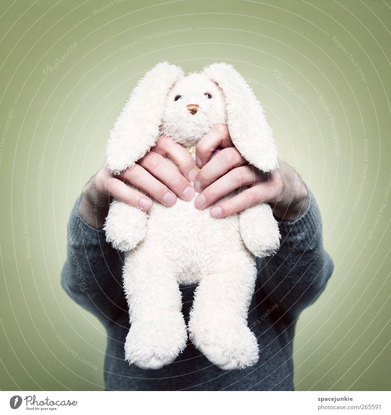 Who killed the rabbit? 1 Human being Animal Catch Creepy Yellow White Revenge Whimsical Humor humorous Hare & Rabbit & Bunny Cuddly toy Toys Strangle Kill Hand
