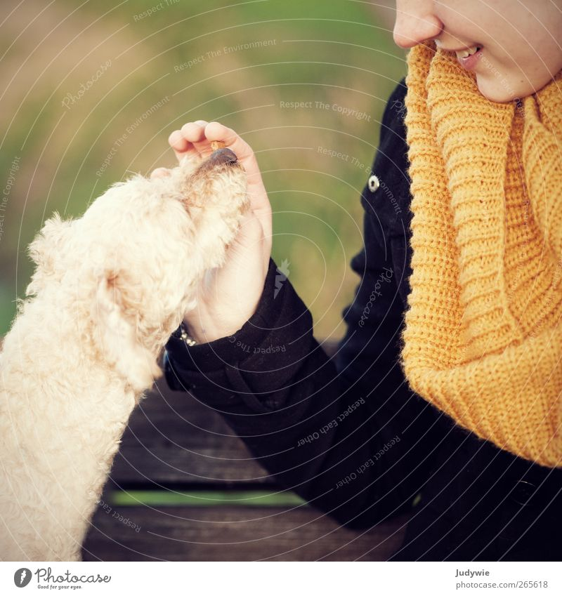 Human being Child Dog Nature Youth (Young adults) Girl Joy Animal Yellow Environment Feminine Autumn Emotions Happy Fashion Friendship