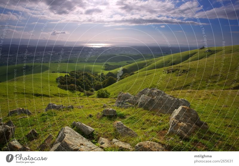 Bay Area from Above Sky Nature Water Green Beautiful Tree Sun Summer Colour Landscape Meadow Grass Spring Bright Rock Field