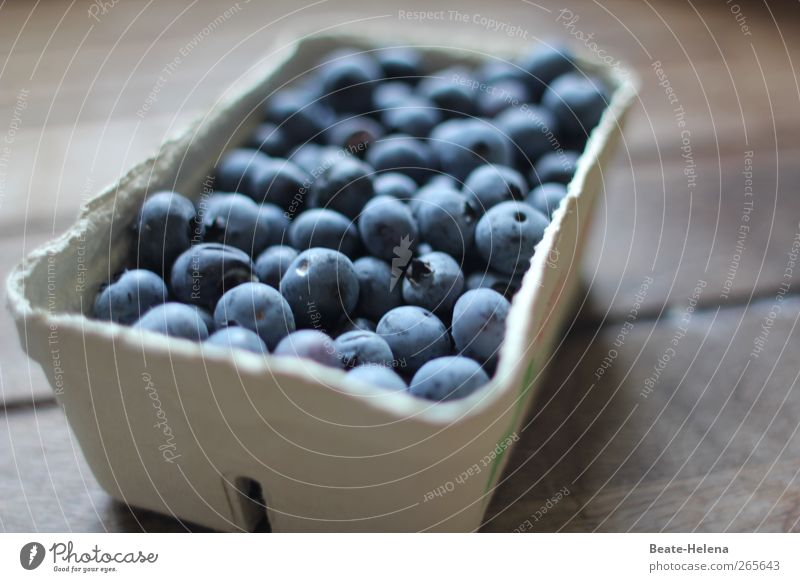 Blue White Healthy Contentment Fruit Food Shopping Bushes Sweet Agriculture To enjoy Joie de vivre (Vitality) Harvest Berries Juicy Gardening