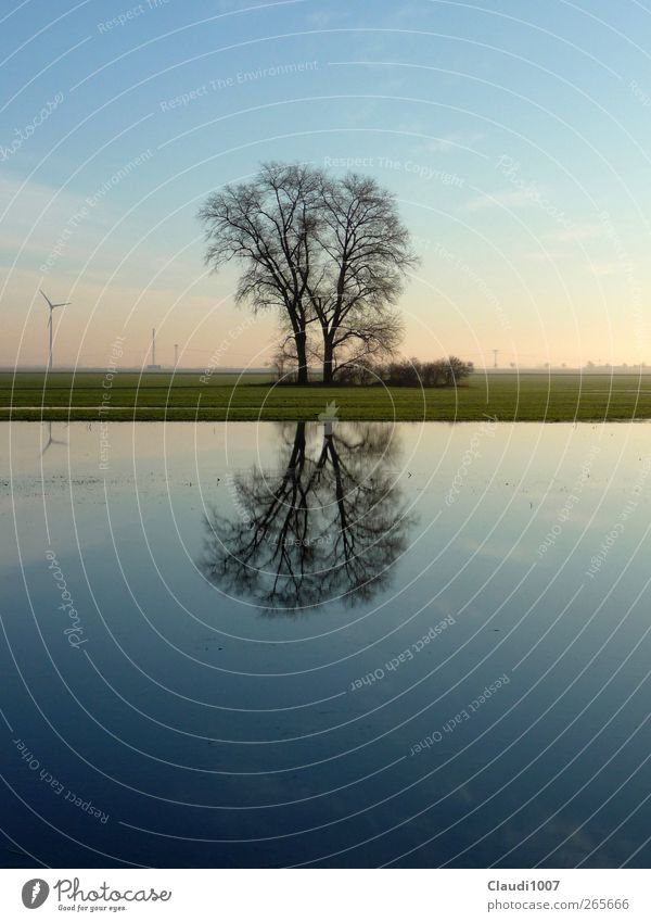 harmony Nature Landscape Plant Water Sky Horizon Spring Tree Grass Field Lake Deluge flooded field Wind energy plant Emotions Happy Contentment Passion