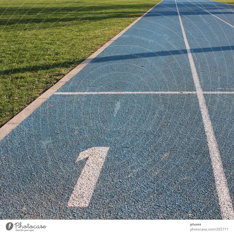 start & win Sports Fitness Sports Training Track and Field Sporting event Success Sporting Complex Racecourse Movement Walking Running Jump Athletic Healthy