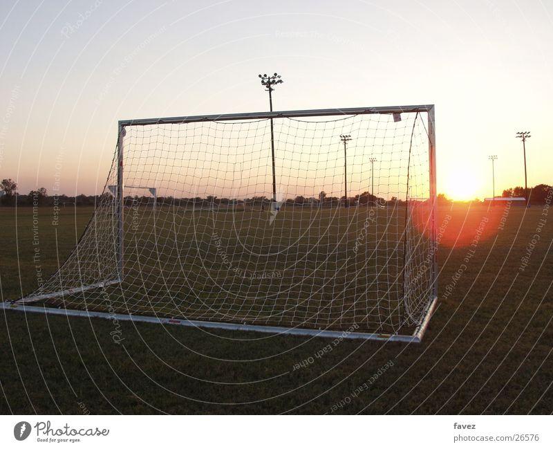 Sports Soccer Gate Evening sun Sporting grounds