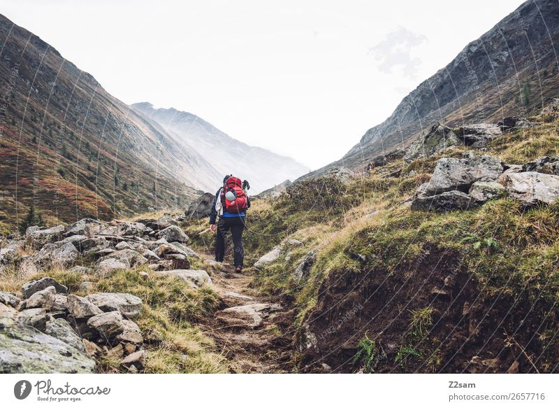 Ascent to the Timmelsjoch | E5 Vacation & Travel Adventure Hiking Young woman Youth (Young adults) 18 - 30 years Adults Nature Landscape Autumn Fog Meadow Alps