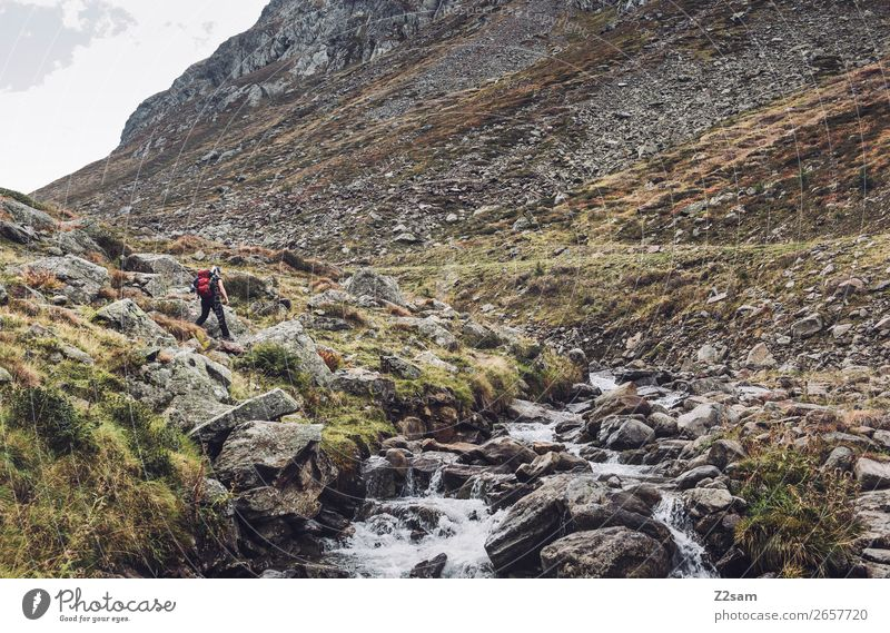 Young woman hiking in the Timmelsjoch | E5 Leisure and hobbies Vacation & Travel Adventure Hiking Youth (Young adults) Nature Landscape Autumn Rock Alps