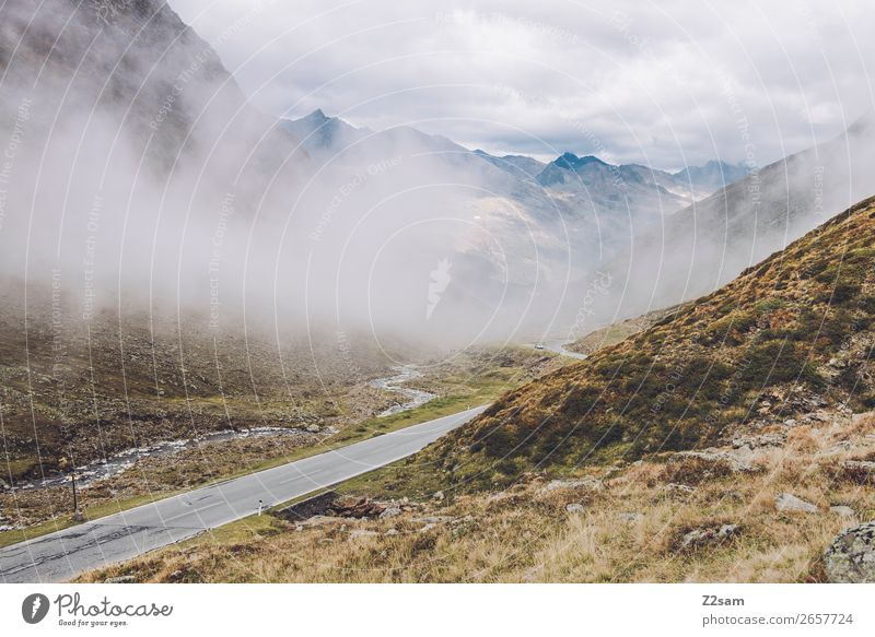 Timmelsjoch Pass Road | E5 Hiking Nature Landscape Autumn Climate Climate change Bad weather Fog Meadow Alps Mountain Street Lanes & trails Threat Gigantic