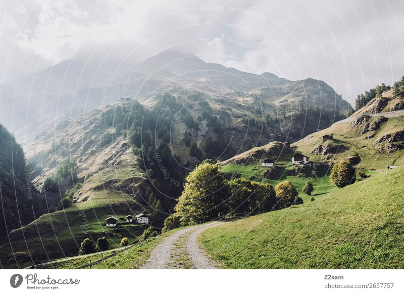South Tyrol | Crossing the Alps Adventure Hiking Environment Nature Landscape Sun Autumn Beautiful weather Meadow Mountain Canyon Village Sustainability Natural