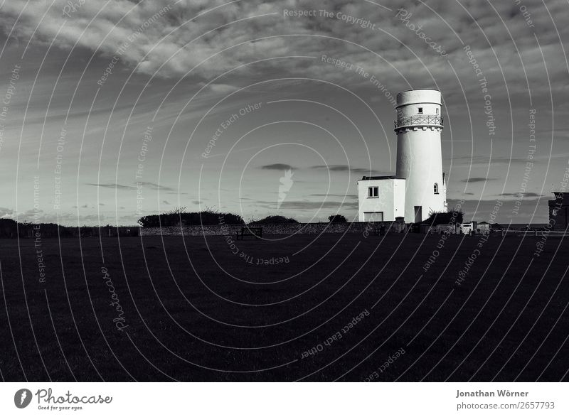 lighthouse Nature Weather Meadow Port City Deserted Tower Lighthouse Gray Black White Black & white photo Exterior shot Evening Low-key