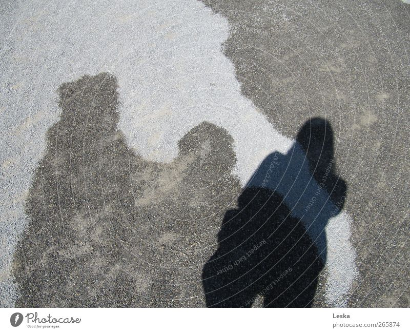 shadow play Woman Adults Stone Water Dark Bright Wet Dry Lanes & trails Silhouette Exterior shot Day Light Shadow Contrast Bird's-eye view Upper body Profile