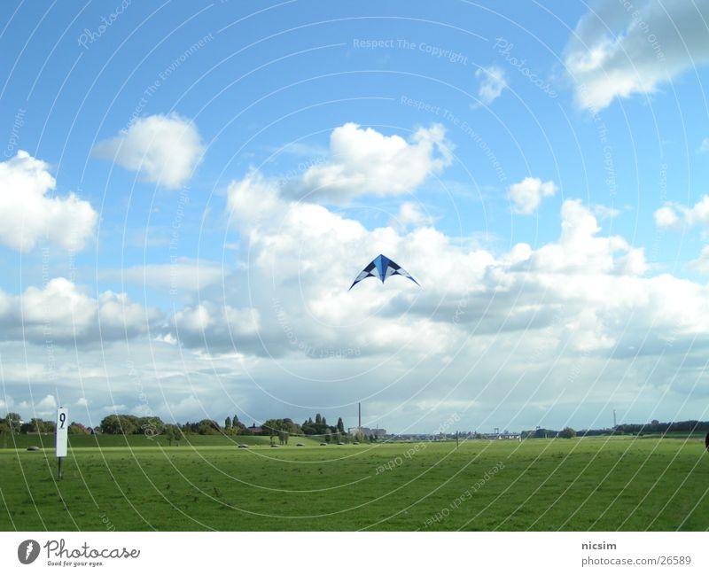 Sky Tree Blue Clouds Meadow Weather Flying Dragon Rhine Duisburg Dike