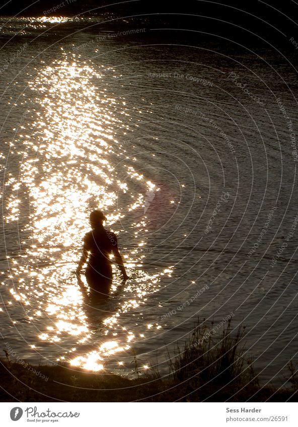 Water Sun Summer Lake Swimming & Bathing Composing Shaft of light Swimming lake