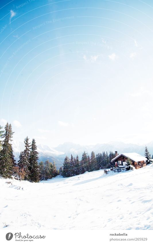 Switzerland | Switzerland | Suisse | Svizzera. Environment Nature Landscape Alps Mountain Cold Snow Winter Sunlight Hut Colour photo Exterior shot