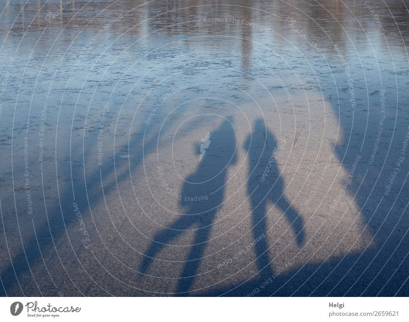 Shadow of two dancing people on an ice rink Leisure and hobbies Human being Feminine 2 60 years and older Senior citizen Environment Nature Winter