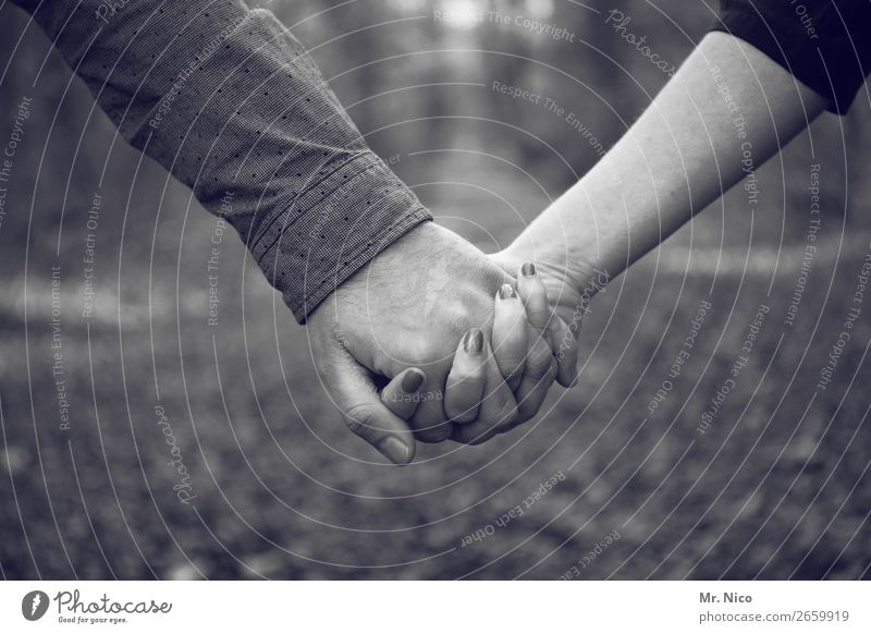hand in hand Couple Partner Hand Fingers 2 Human being Contentment Acceptance Trust Safety Protection Safety (feeling of) Agreed Loyal Sympathy Friendship