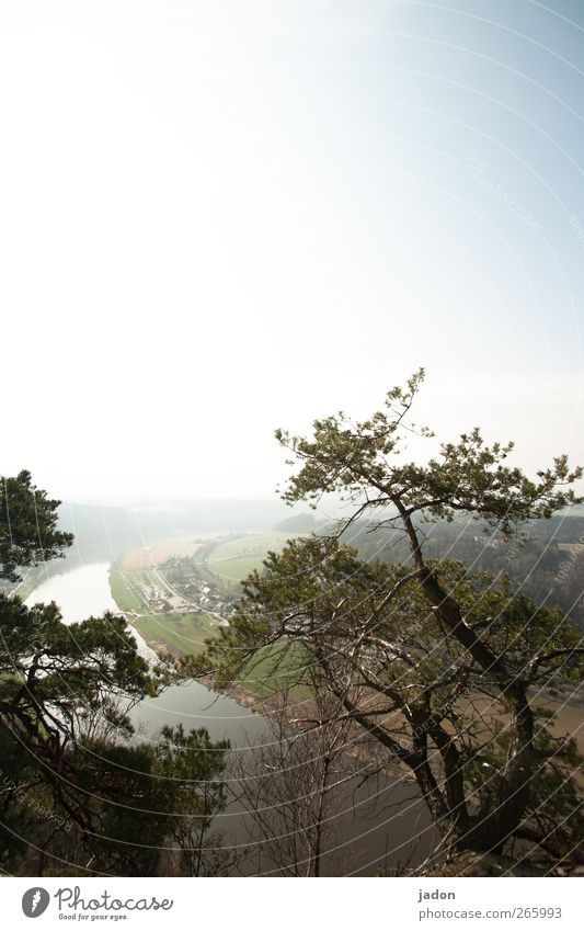 the river in the back. Tourism Far-off places Nature Landscape Horizon Sun Beautiful weather Tree Hill Canyon River bank Elbe Eternity Elbsandstone mountains