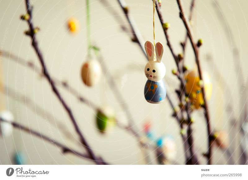 Spring Decoration Easter Cute Kitsch Hare & Rabbit & Bunny Figure Hang Tradition Painted Festive April Easter egg Twigs and branches Odds and ends Adorned
