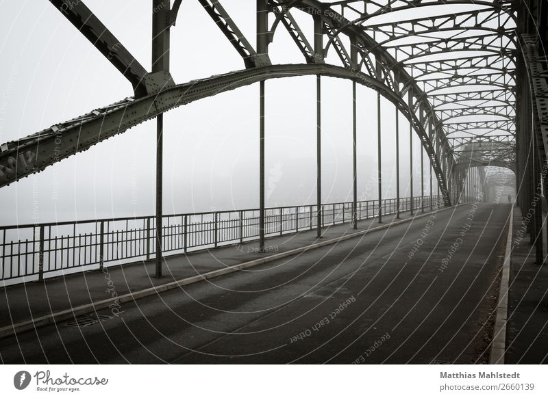 Ice advertising bridge in Berlin in fog Environment Landscape Autumn Fog Lake Bridge Transport Traffic infrastructure Passenger traffic Road traffic Cycling
