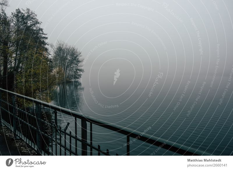 Fog at the lake Environment Nature Landscape Autumn Weather Lake Bridge Cold Blue Calm Loneliness Relaxation Moody Colour photo Subdued colour Exterior shot