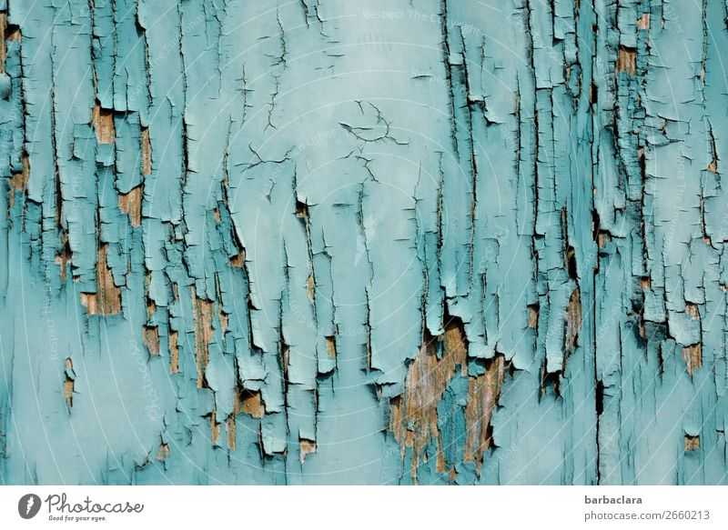 I'm afraid the paint's off. Building Wall (barrier) Wall (building) Facade Door Wood Line Stripe Old Esthetic Blue Turquoise Bizarre Colour Art Transience