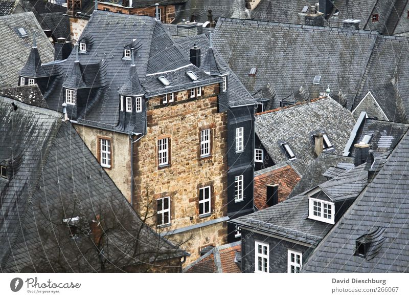 Good old Marburg Town Downtown Old town House (Residential Structure) Castle Facade Window Roof White Slate Oriel Oriel window Beautiful City trip Hesse
