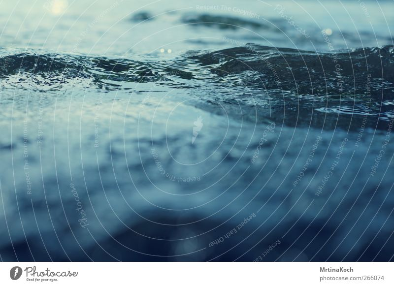 wave passage. Environment Nature Water Drops of water Waves Movement Surface of water Colour photo Multicoloured Exterior shot Close-up Detail