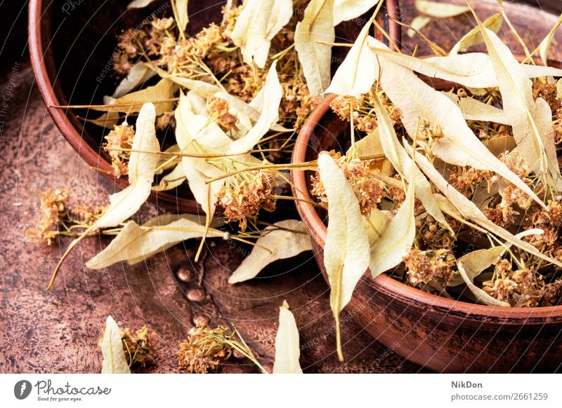 Dry linden leaf herb plant medical tea healthy alternative mortar medicinal homeopathy healing therapy floral lime beverage dry petal blossom yellow remedy