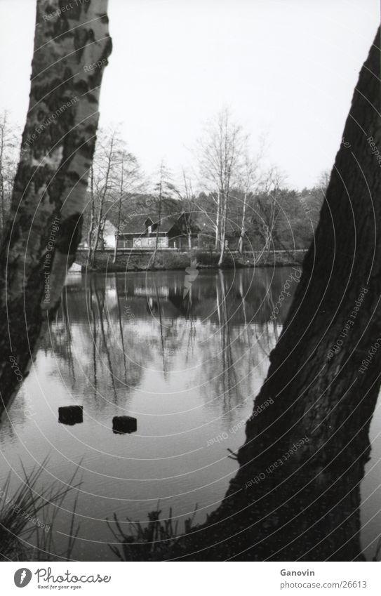 water mirroring Reflection Lake Black & white photo Water Perspective Nature