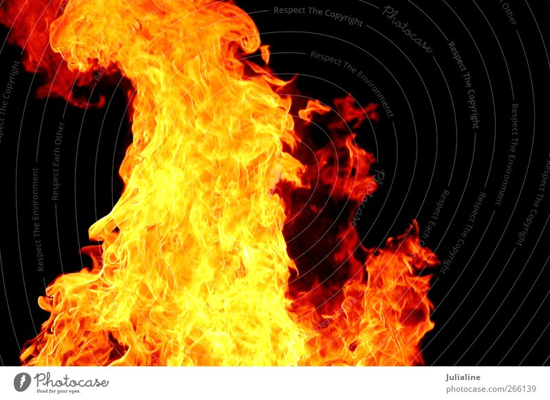 Red flame on the black background Colour Black Yellow Movement Bright Energy Hell Devil Heat Spark Consumption Consistency Effect Inferno Furnace