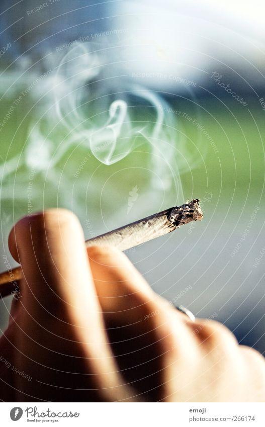 Hand Warmth Fingers Lifestyle Smoking Smoke Cigarette Unhealthy Ashes Cigarette smoke