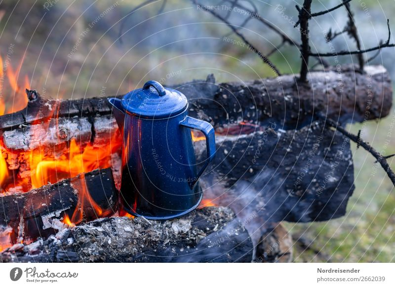 Surprise. Later coffee. To have a coffee Picnic Beverage Coffee Tea Crockery Vacation & Travel Adventure Freedom Camping Nature Elements Fire Forest Authentic