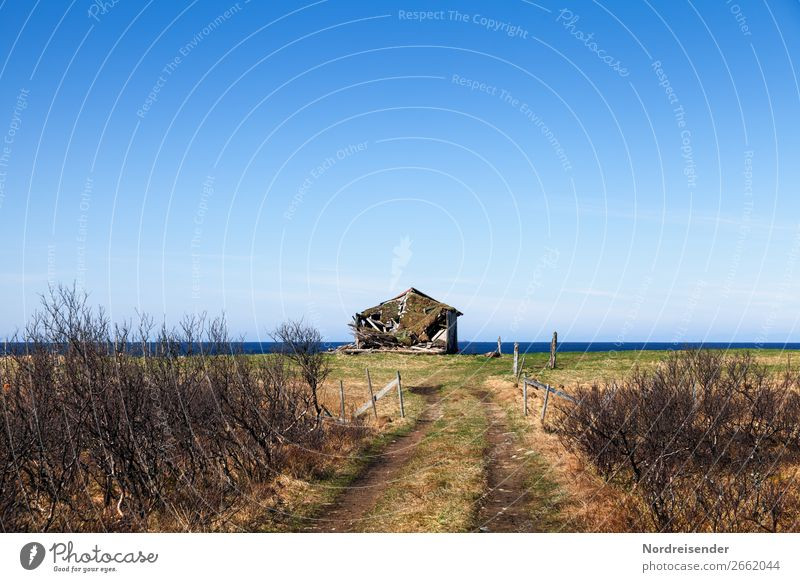 Old barn by the sea Vacation & Travel Ocean Agriculture Forestry Nature Landscape Water Bushes Meadow Coast Fishing village Ruin Manmade structures Building