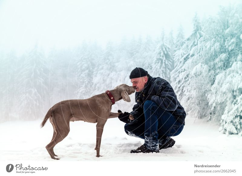 Human being Dog Man Christmas & Advent Relaxation Animal Joy Forest Winter Adults Snow Happy Freedom Trip Hiking Masculine