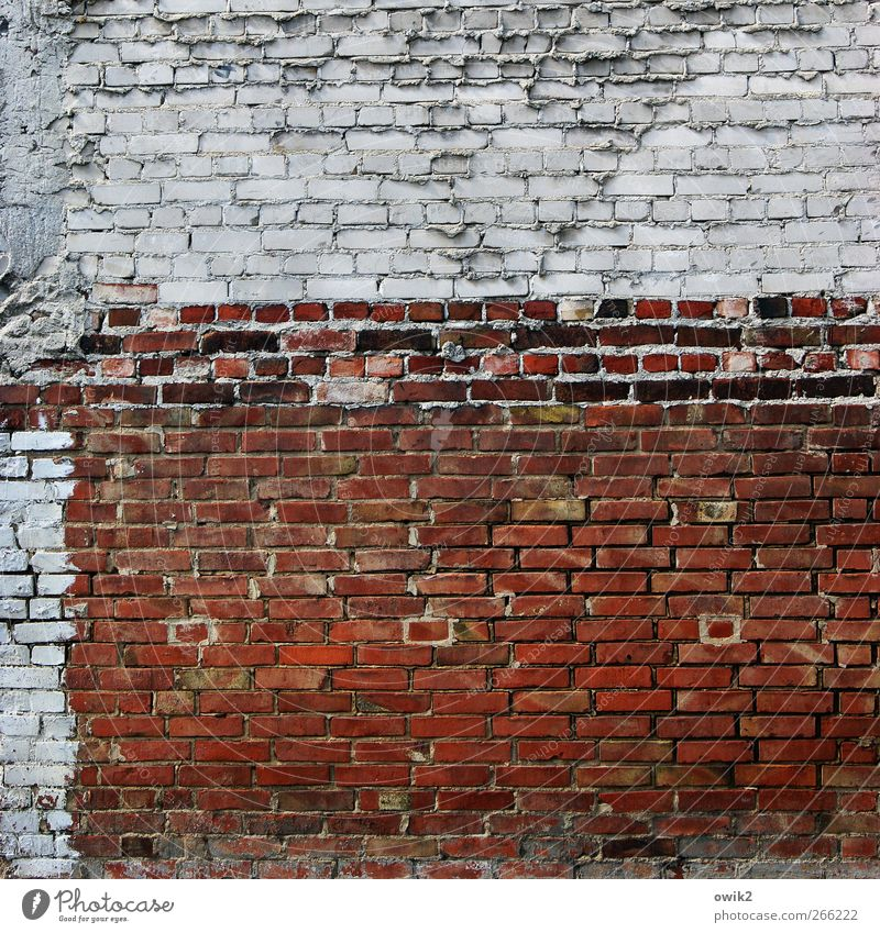 No one had any intention Manmade structures Building Architecture Wall (barrier) Wall (building) Facade Brick Brick wall Brick facade Stone Stand Old Esthetic