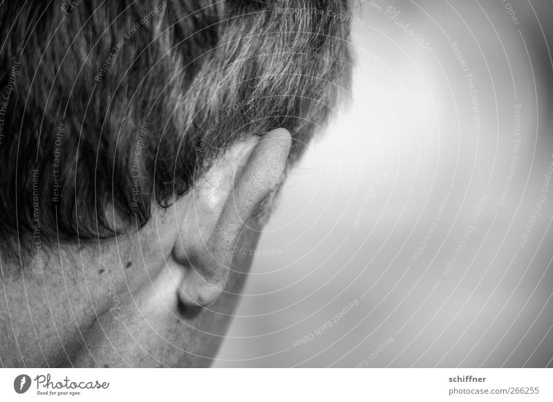 Listen up! Human being Masculine Man Adults Skin Hair and hairstyles Ear Fear Listening Neck Rear view Back of the head Mole Black & white photo Exterior shot