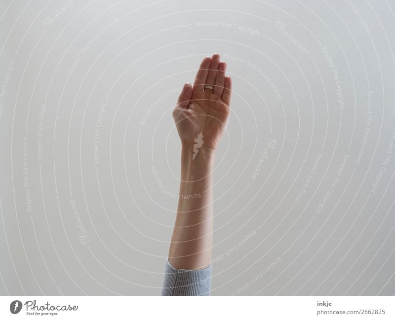 Human being Hand Communicate Authentic Arm Simple Make Flat Gesture Outstretched Palm of the hand