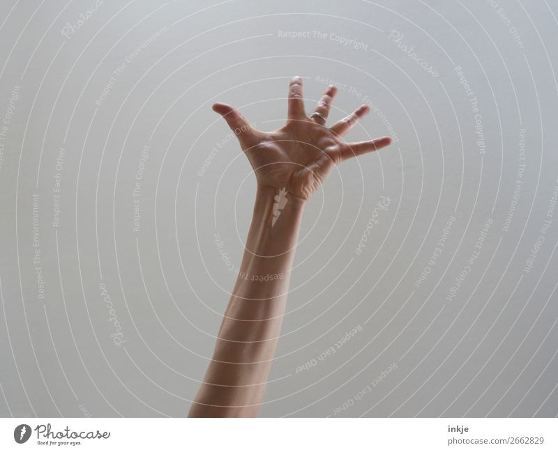 Surprise ! Lifestyle Joy Arm Hand Fingers Authentic Bright background Palm of the hand Gesture Stretching Applause Caucasian Thin Colour photo Interior shot