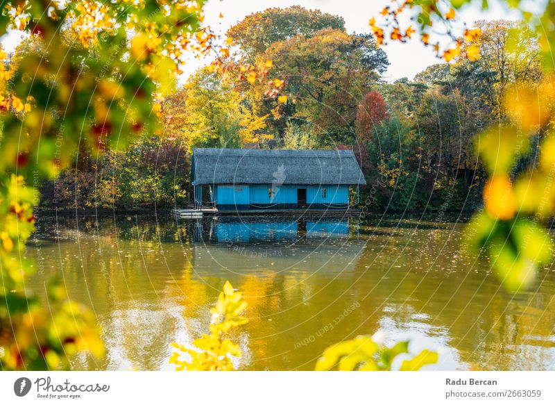Lake House Surrounded By Colorful Fall Trees In Autumn Vacation & Travel Nature Plant Blue Colour Beautiful Green Water Landscape Red