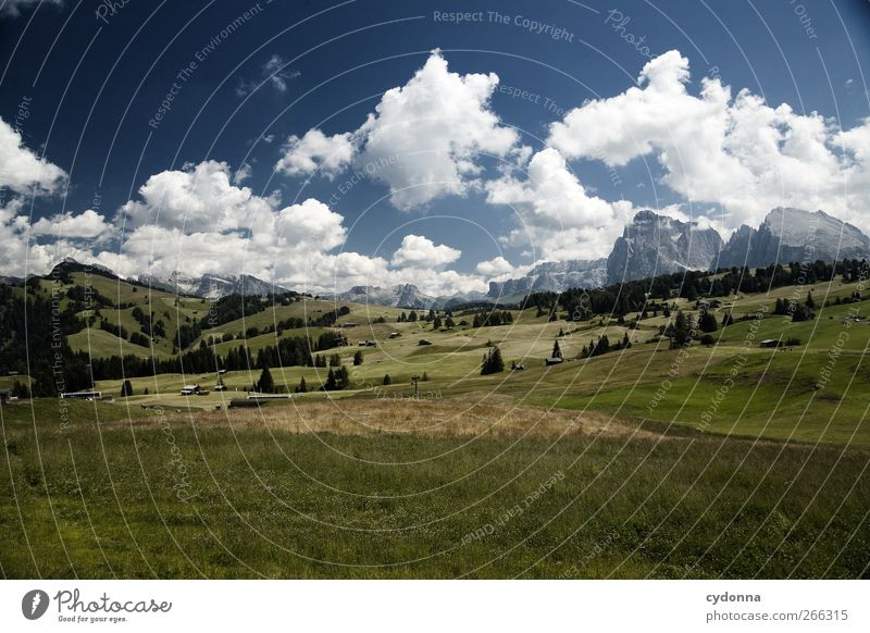 Alpe di Siusi Healthy Life Harmonious Well-being Relaxation Calm Vacation & Travel Tourism Trip Adventure Far-off places Freedom Hiking Environment Nature