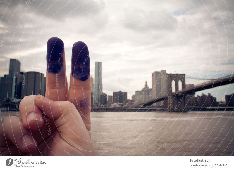 City Emotions Architecture Moody Fingers High-rise Bridge Grief Sign Skyline Monument Landmark American Flag Tourist Attraction New York City Ink