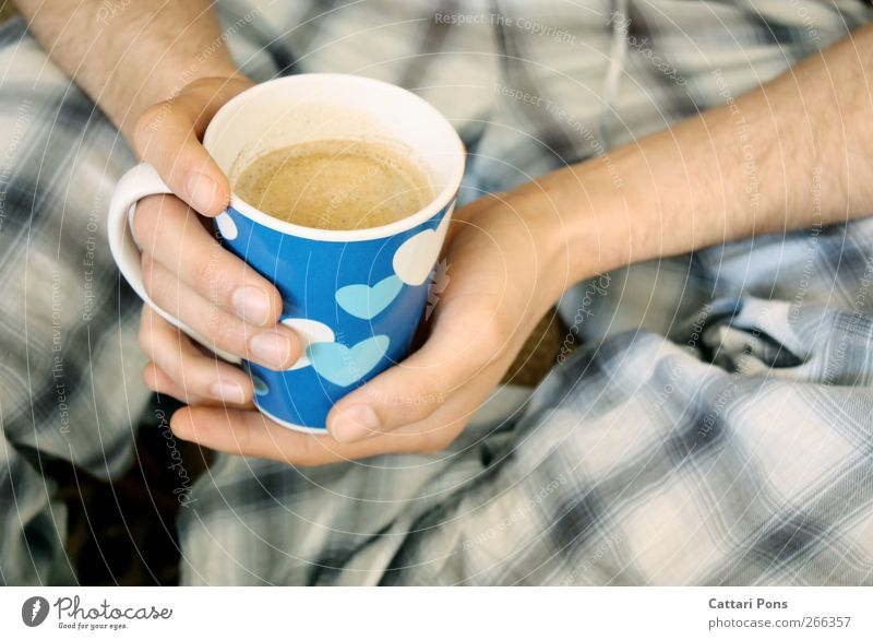 blue coffee Masculine Hand 1 Human being To hold on Drinking Fluid Hot Wet Blue Coffee Cup Porcelain Heart Hair Pyjama Morning Beverage Hot drink Warmth